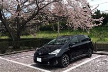 Leather Custom FIRSTさんのPRIUS_ALPHA