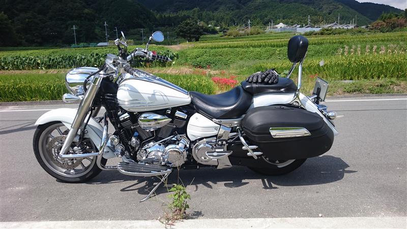 かづかづさんのXV1900A Midnight Star (ミッドナイトスター)