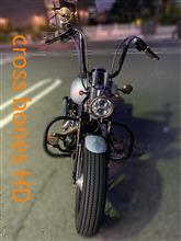 エイブさんのFLSTSB X-Bones (クロスボーンズ) メイン画像