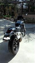ミスハルさんのモンスター S2R 800 リア画像