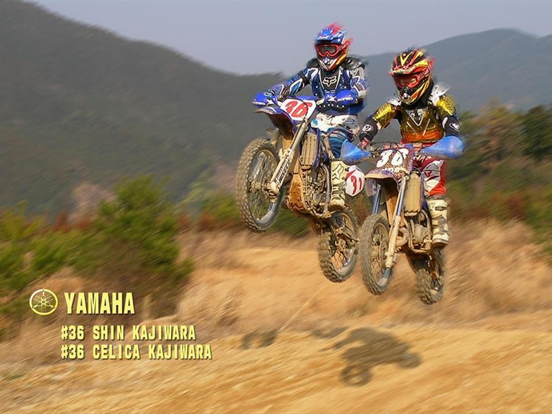 ヤマハ YZ250F