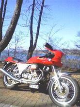 TR65さんのアルチューロ メイン画像