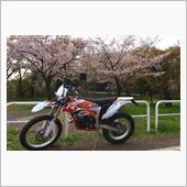 rider61さんのフリーライド250R