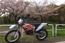 rider61さんのフリーライド250R メイン画像