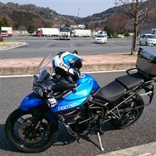 日進さんのTiger800 (タイガー) メイン画像