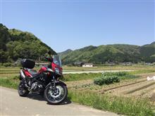 紅棗さんのV-Strom 650XT ABS リア画像