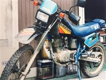 丸 ちさんのSX200 メイン画像