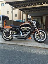 hiro381さんのXL1200ca メイン画像