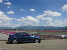 BMW Club KyotoさんのD3 リア画像