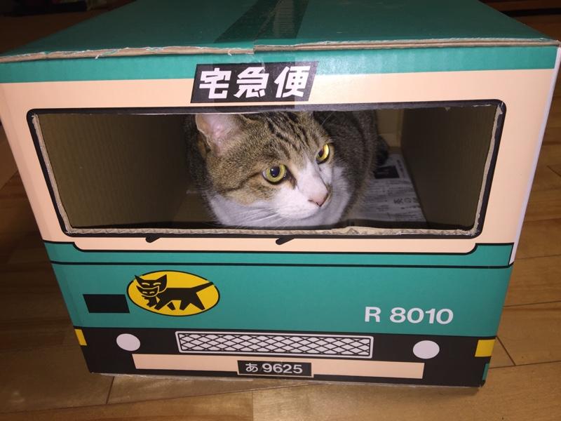 RU-samaさんのダイナルートバン