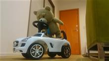 サヌーさんのSLS AMG メイン画像