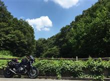 ピさんのジェイド(バイク) メイン画像