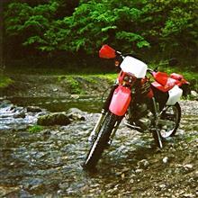 そく温泉さんのXR250 MD30 メイン画像