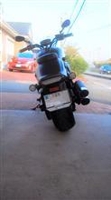 morihideさんのXVS1300CU リア画像