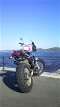 ヤングミドルさんのTW200E リア画像