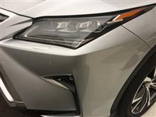 gikohaさんの愛車:レクサス RX