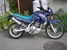 ガレージが欲しいさんの愛車:カワサキ KLE250 ANHELO (アネーロ)