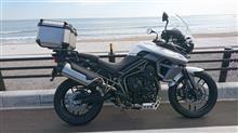 歯車さんのタイガー800XRX メイン画像
