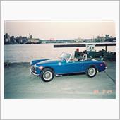 Red Jaguarさんのミジェット