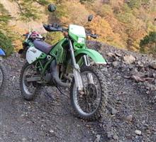 Morio36さんのKDX125 メイン画像
