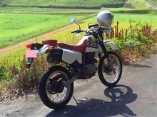 bicycle-tourkinistさんのXL125R メイン画像