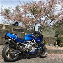 6輪車さんのTRX850 メイン画像