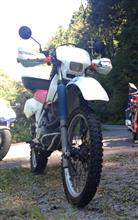 わにひかさんのXLR200R メイン画像