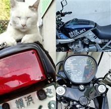 温泉ライダーやまちゃんさんのGSX1100S KATANA (カタナ) リア画像