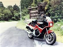 Cliffside ParkさんのKR250S 左サイド画像