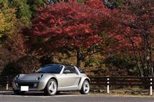 @teruさんの愛車:スマート ロードスター