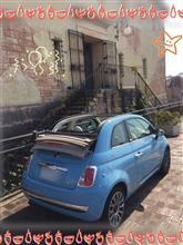 ねこちゃん車さんのフィアット500 C (カブリオレ) リア画像