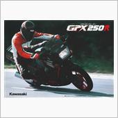 ケイピカさんのGPX250R