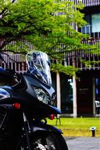 2+4さんのV-Strom 650XT ABS リア画像