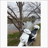 Kawasaki midoriさんのリードEX