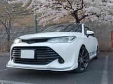 ゲジマユゲさんの愛車:トヨタ カローラフィールダー