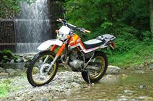 rider61さんのセロー225WE メイン画像