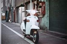 minnjiさんのベルーガ50 メイン画像