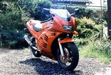 ケイピカさんのRF400RV メイン画像