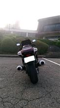 むびょーさんのZX-11 リア画像