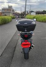グピ太郎さんのV-Strom 250 リア画像