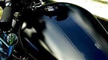 ポニョブさんのXL1200L インテリア画像