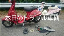 鈴木 襟夫さんのキュート 左サイド画像