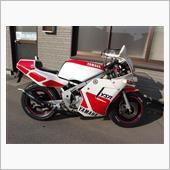 so(エスオー)さんのYSR80(50)