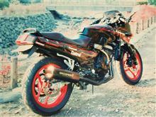 kt21187さんのGPX250R 左サイド画像