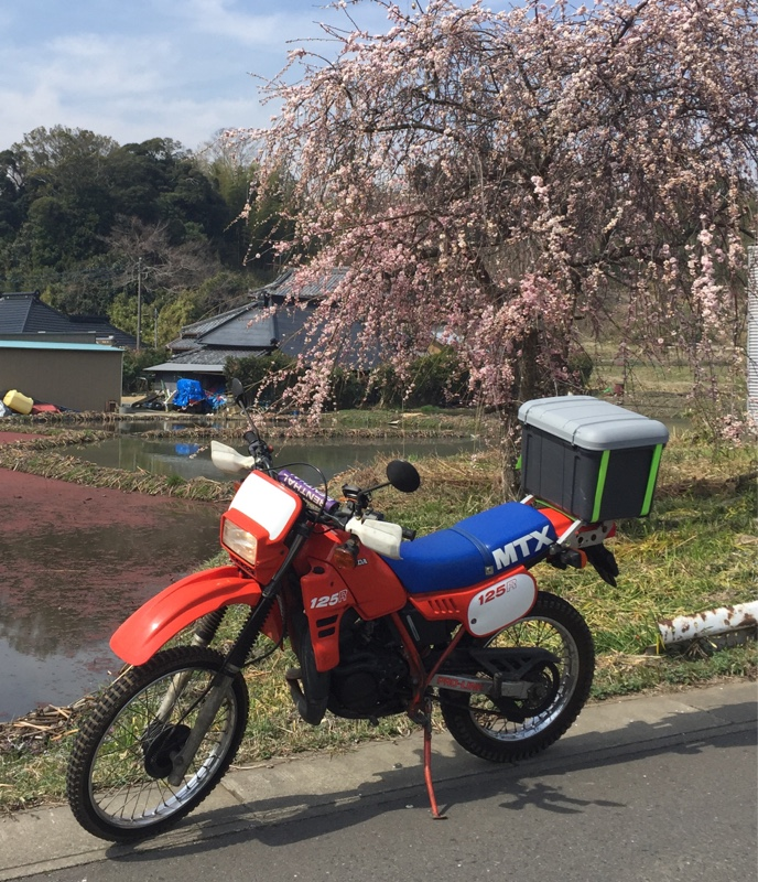 thermaeさんのMTX125R