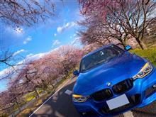 黒の組織さんの愛車:BMW 3シリーズ セダン