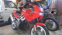 バイクに乗った漁師さんのTRX850
