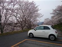 コ~ちゃんさんの愛車:フィアット フィアット500 (ハッチバック)