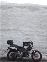 〇〇輪さんのG650 クロスカントリー メイン画像