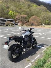 ぴかきーさんのXSR700 リア画像